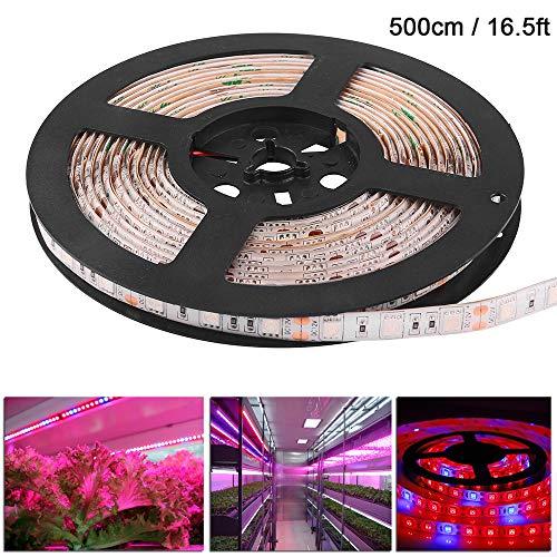 OurLeeme Impermeable 5050 Flexible LED Crece Rojo de la Tira de luz Azul y 5: 1 Acuario Invernadero hidropónico de Plantas de la lámpara Creciente de la Cinta 60led 5M