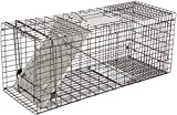 Live Animal Trap - Humane Catch & Release Cage for Raccoon, Opossum, Stray Feral Cat, Rabbit - No-Kill Bait Trapping Kit - 32' X 12' X 12'