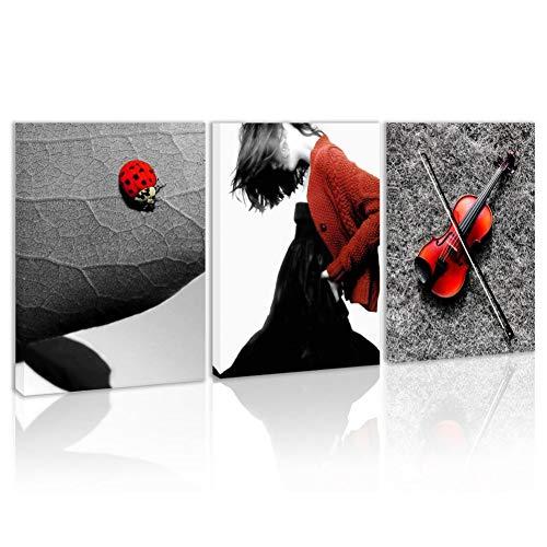 RHBNVR canvas schilderij 3 stuks zwart wit rood vrouw muziek muurkunst viool insecten blad canvas afdrukken Home woonkamer decor