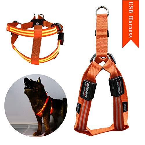 Led Dog Halter Harness