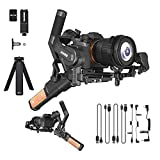 Feiyu AK2000S 3-Axis Handheld Gimbal Stabilizer Compatible with Mirrorless and DSLR Sony Canon Panasonic Nikon Fuji Cameras & Tripod Max Payload Updates to 2.2 kg