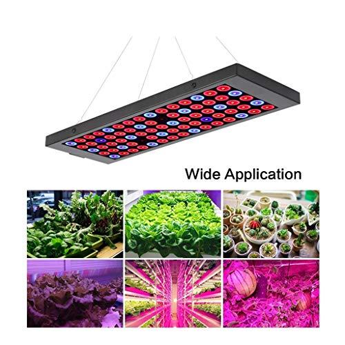 Led-plantenlamp, 10 W, ultradun, ultralicht, bloeiende verlichting voor indoor tuin, kas, hydrocultuur, planten, waxend verlichting