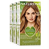 Naturtint Coloración 7.34 Avellana Luminoso. Tinte sin Amoniaco. 100% Cobertura de Canas e Hidratación. Ingredientes y Aceites Vegetales. Color Natural y Duradero. Pack de 3