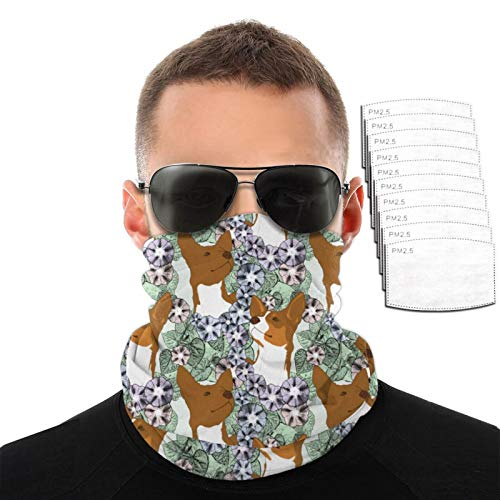 Srtgsyhrt Rat Terrier Variety Face Towel with Filter Print Dust Mask Bavaclava Head Band Shield Scarf Pattern with 2/6/10 Filter