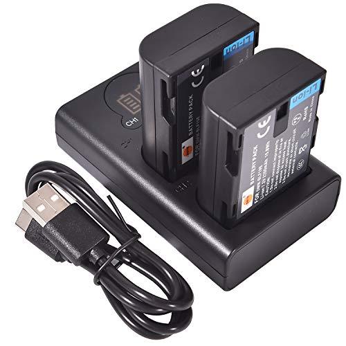 DSTE DMW-BLF19E バッテリーパック 2個 (大容量 2200mAh/7.2V) + デュアル バッテリー 充電器 急速充電 Lumix G9 DC-G9GK-K DMC-GH3 DMC-GH4 DMC-GH5 DMC-GH5S に対応