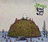 Songtexte von J Mascis - Several Shades of Why