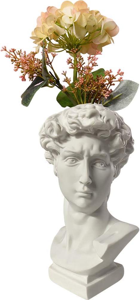 Kelendle Indoor Outdoor Heads Planter Resin Succulent Planter Vase Greek Statue Planter David Sculpture Figure Home Garden Decor White 6.1 inches