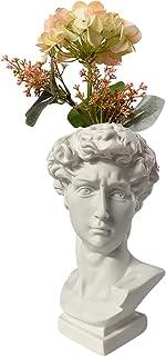 Kelendle Indoor Outdoor Heads Planter Resin Succulent Planter Vase Greek Statue Planter David Sculpture Figure Home Garden...