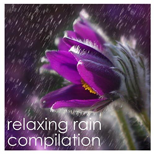 Rain Sound Studio, Rain and Nature, Relaxing Music Therapy