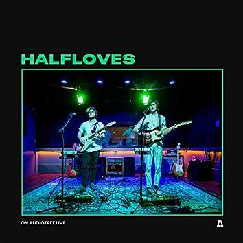 Halfloves on Audiotree Live