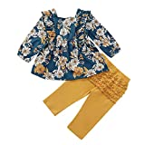 Kids Little Toddler Baby Girls Fall Outfit Ruffled Long Sleeve Floral Dress Shirt Tops + Lace Pants Winter Clothes Set Blue