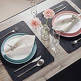 Saltibo ® Platzsets – Abwaschbare Tischsets – Platzdeckchen mit Rutschfester Rückseite – 18-teiliges Filzset mit Glasuntersetzer und Bestecktasche - 8