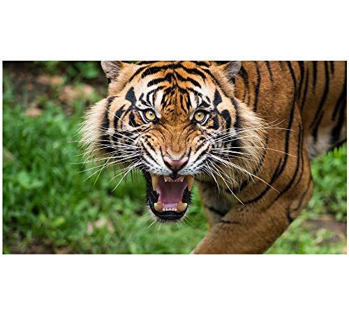 Yqgdss Puzzle 1000 Pezzi DIY Tigre Feroce Animale Regalo di Residenza per Artista di Intrattenimento per Adulti per Bambini