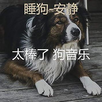 睡狗-安静