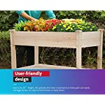 Raised garden bed with legs 48x23x32 inch wheels elevated garden bed wood planter box kit for vegetable flower outdoor… 9 ✔【high quality materials】:the raised garden bed is made of no paint, garden bed use non-toxic fir wood, which is known for its strength and dimensional stability as well as its natural resistance to rot and pests. The 0. 6'' thick solid wood boards are only sanded to prevent any undesired injury caused by wood splinters. ✔【nature gardening buddy】:the garden bed use natural wood color makes your garden and greenhouse more original and healthy, and its natural wood grain on the boards bring a rustic and natural style to your garden. ✔【ergonomic design】:the garden bed built with a set of locking wheels to move the planter from place to place. The wood garden bed user-friendly design,the height about garden raise bed is 32. 3 inch, the people who have a backache or knee pain can easily manage plants,you don't need to bend down or keep down.