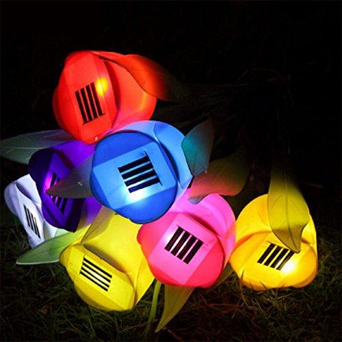 GDRAVEN énergie solaire LED Lampe de jardin extérieur cour coloré Fleur Tulipe pelouses d'aménagement paysager et d'herbes Lot de 5