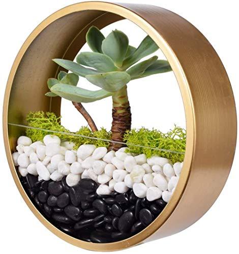 Macetero de pared Haing, de metal redondo dorado de 8 pulgadas para flores, plantas suculentas, plantas de aire, mini cactus, plantas sintéticas, soporte de pared retro para decoración de interiores