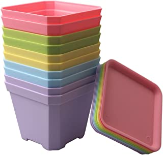 Best nursery containers for sale Reviews