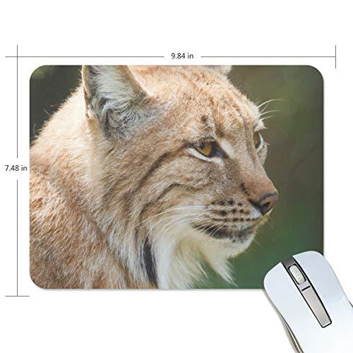 MONTOJ Gaming Mauspad Cool Animal Lynx Computer Tastatur Mauspad, wasserabweisend, rutschfeste Unterseite, ideal für Gaming und Arbeiten
