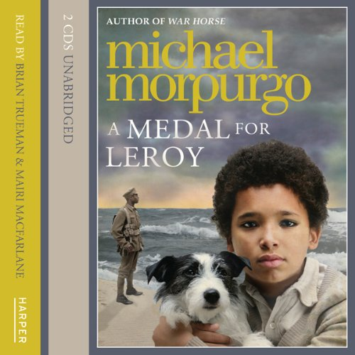 A Medal for Leroy audiobook cover art