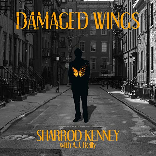 Damaged Wings audiobook cover art