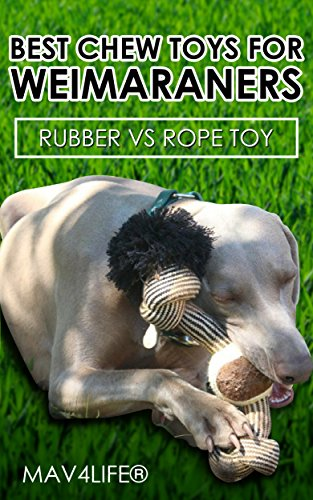 Best Chew Toys for Weimaraners: Rubber vs Rope Toy (Weimaraner, Dogs, Hunting Dogs, Family Dogs, Dog Toys, Chewers)