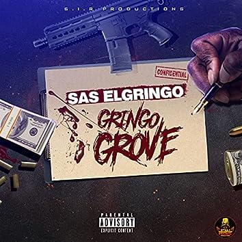 Gringo Grove