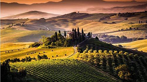 DKMDT Puzzle da 1000 Pezzi Incredibile Toscana Visualizza Tutti i Puzzle