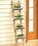 Galvanized Planter , 2-In-1 Ladder Planter