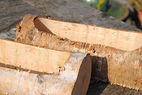 Birkenholz Stamm ausgefräst als Pflanzgefäß. Länge 30cm