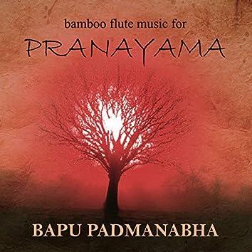 Bamboo Flute Music for Pranayama