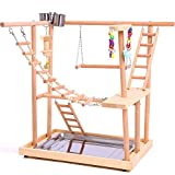 QBLEEV Wood Parrot Playground Perches with Swing,Birds Chewing Climbing Ladder Toys, Bird Training Play Stands Feer Cups for Parakeets Conures Cockatiel Lovebirds (18.7' L12.8 W20.87 H)