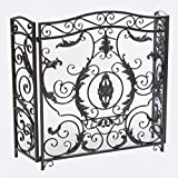 Christopher Knight Home Waterbury Fireplace Screen, Silver Flower On Black