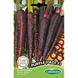 Germisem Purple Haze F1 Zanahoria 300 Semillas
