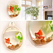 3 Size Transparent Acrylic Wall Plants Hanging Wall Aquarium Bowls Vase Fish Tank Aquarium Plant Pot Home Decor Home Decoration