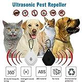 Collare Per Cani E Gatti Ad Ultrasuoni Senza Tick Repellente Per Zecche E Pulci, Controllo Delle Pulci, Pidocchi E Zecche Per Cani - Protezione Naturale Delle Pulci Per Animali Domestici (Nero)