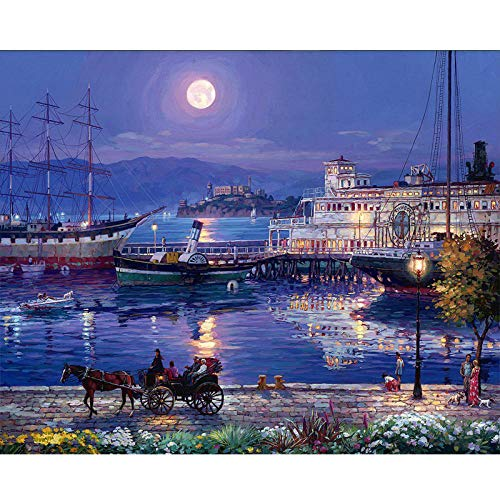 hand-painted oil painting for Children Painting by numbers Under the moon Paints for canvas painting Bedroom Decor Great Accomplishment Gift 40X50cm/unframed