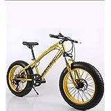 ファットタイヤメンズマウンテンバイク、ダブルディスクブレーキ/高炭素鋼フレームクルーザーバイク、ビーチスノーモービル自転車、26インチホイール,D,21 speed