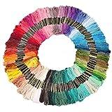 刺繍糸クロスステッチ 刺繍セットカラーが豊富できれい 刺しゅう糸初心者 高質量 多色鮮やかな縫い糸 セット 色鮮やか 光沢 きれい ミサンガフロス (100束 x 100色)