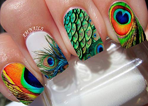 Peacock Feather Water Nail Art Transfers Stickers Decals - Set of 22