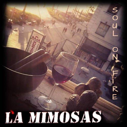 La Mimosas