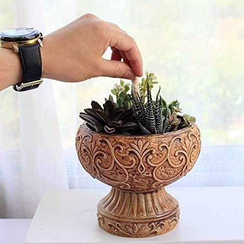 Bcaer Planter for keramische Blumentöpfe Topfpflanzen mit automatischer Wasseraufnahme Indoor Haus Balkon Wohnzimmer Desktop-Dekoration Pflanze Blumentopf Behälter gelegt Pflanze Blume