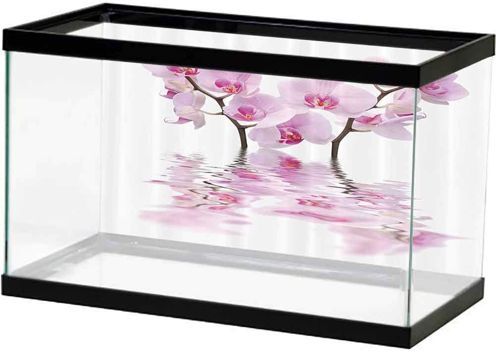 Apartment Decor Collection Fish Tank Orch Wild Background Dallas Mall Poster Popular overseas