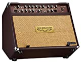 Carlsbro Sherwood 60 Guitar Amplifier