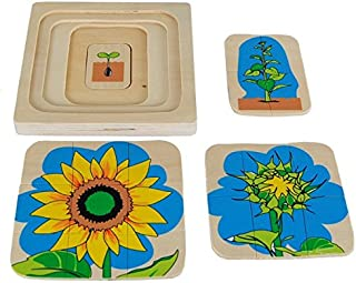 Kid Advance Montessori Sunflower Life-Cycle Puzzle