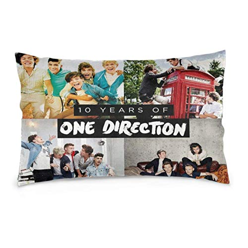 Hengtaichang One-Direction Soft Pillowcase for Hair and Skin,Bed Pillow Covers for Home Decor 14' X20
