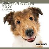 アーリスト 2020 THE DOG カレンダー シェットランドシープドック