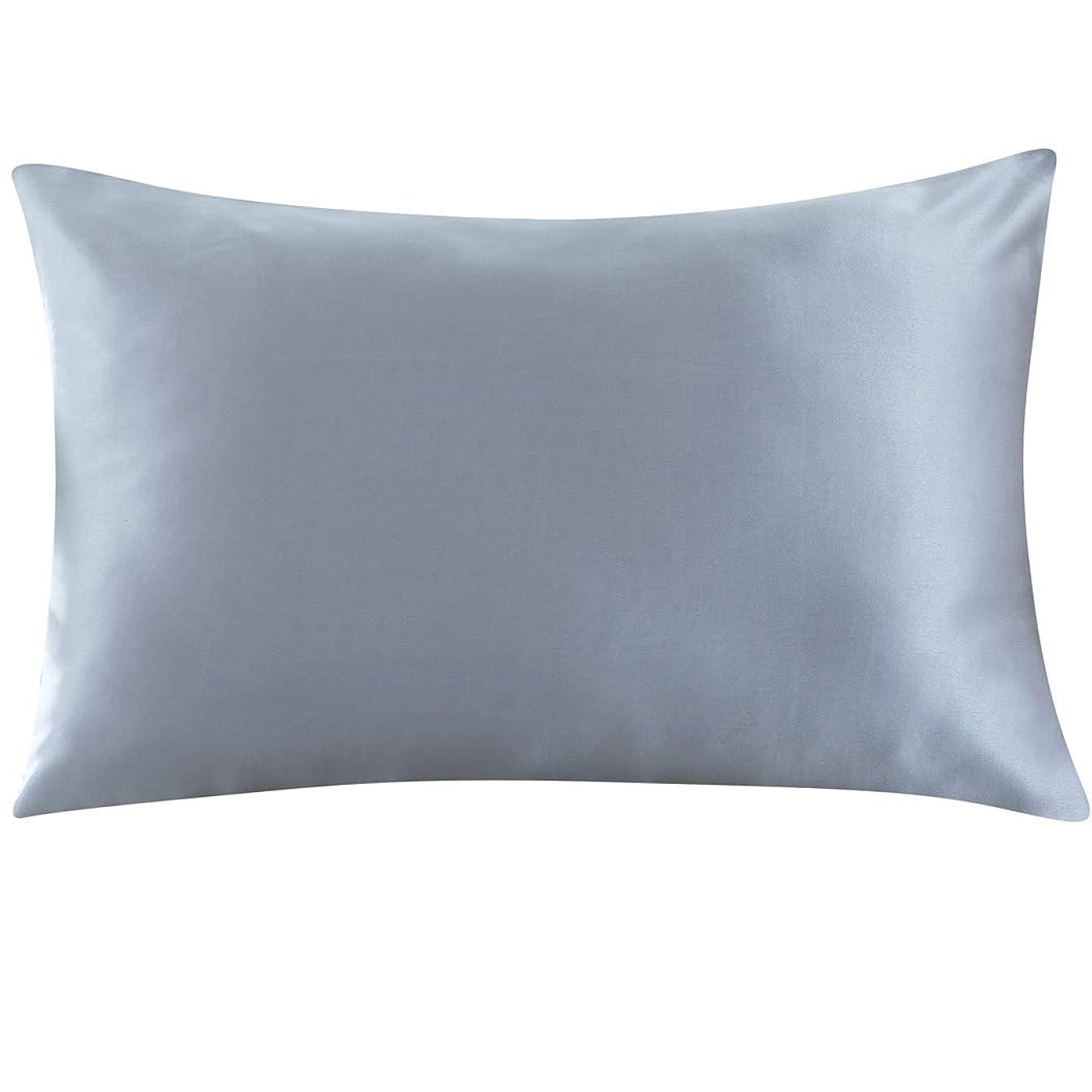 ZIMASILK 100% Mulberry Silk Pillowcase for Hair and Skin,with Hidden Zipper,Both Sides 19 Momme Silk, 1pc (Queen 20''x30'',Iron Grey)