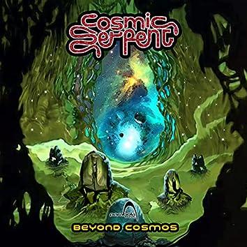Beyond Cosmos