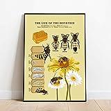 Bilder,Poster Kunstdrucke,Antike Bienen Druckt Natürliche
